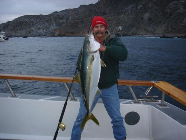 The 3/4 day boat San Diego out of Seaforth Sportfishing in San Diego caught ...