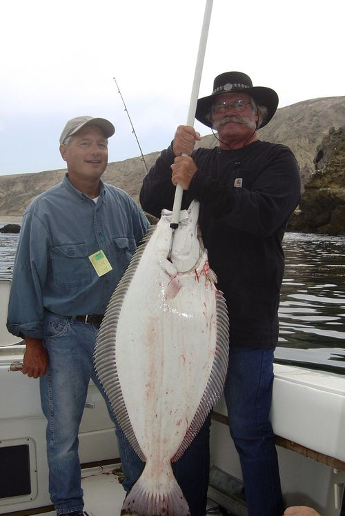 Winning halibut tips for mdr halibut derby from expert for Santa barbara fishing charters