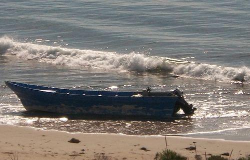Panga-boat-Refugio