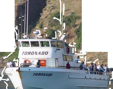 Toronado-sportfishing