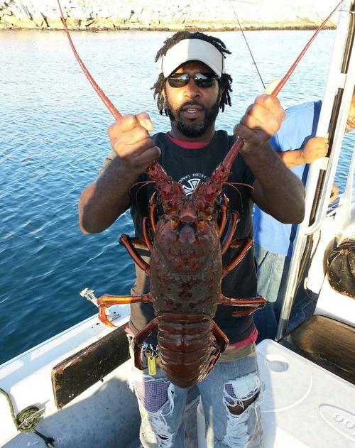 LobsterAlJames